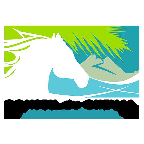 Fédération - Conseil du Cheval de La Réunion